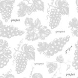 Seamless pattern with grapes, leaves and branches Stock Image