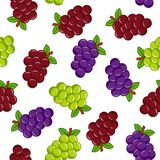 Seamless pattern with grapes stock illustration