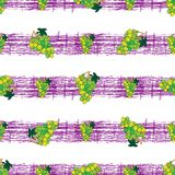 Seamless pattern with grapes on strips Stock Photo