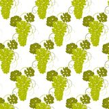 Seamless pattern grapes vector. Seamless pattern of hand-drawing a bunch of green grapes with leaves on a white background vector Stock Photo
