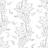 Seamless pattern with grapes. Stock Photo