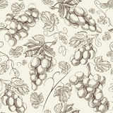 Seamless pattern with grapes for your background Royalty Free Stock Photos