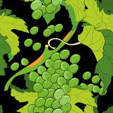 Seamless pattern with grapevine. On black background Royalty Free Stock Image