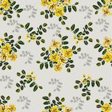 Seamless pattern,Graphic design, Cassia flower in abstract style on black background. For fabric.paper Royalty Free Stock Images