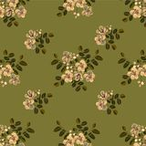 Seamless pattern,Graphic design, Cassia flower in abstract style on green background. For fabric.paper Royalty Free Stock Photography