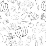 Seamless pattern with graphic vegetables. Seamless pattern with vegetables in doodle style Stock Image