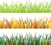 Seamless pattern Grass Royalty Free Stock Photography