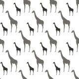 Seamless Pattern With Gray And Black Silhouette Giraffe Animals Ornament Stock Image