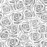 Seamless pattern with gray and white roses. Vector illustration. Royalty Free Stock Image