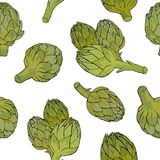Seamless pattern with green artichoke flower buds or inflorescences hand drawn on white background. Backdrop with tasty Royalty Free Stock Image