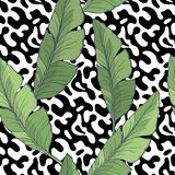 Seamless pattern with green Banana leaves on the black and white abstract background. illustration. Seamless pattern with green Banana leaves on the black and vector illustration