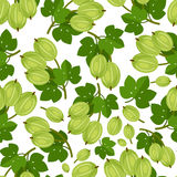 Seamless pattern with green berries stock photo