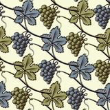 Seamless Pattern of Green and Blue Grape. Vector illustration Royalty Free Stock Image