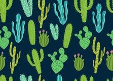 Seamless Cactus Background Pattern Design Stock Photos