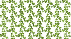 Seamless pattern with green clover. St. Patrick`s day. vector illustration