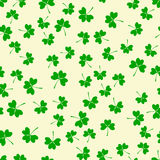 Seamless pattern with green clover Stock Images