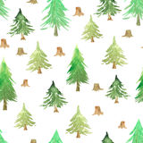 Seamless pattern with green fir trees. And small stumps. Decorative background with hand painted evergreen forest spruce. Woodland modern design perfect for Stock Photo