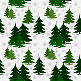 Seamless pattern green fir trees on snow. Abstract winter background, different green fir trees, in groups and separated, on snow with silver snowflakes, winter Stock Photos