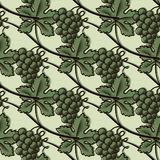 Seamless Pattern of Green Grape. Vector illustration Stock Images
