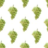 Seamless pattern with green grape Royalty Free Stock Images