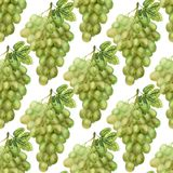 Seamless pattern with green grape Stock Image