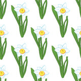 Seamless pattern. Green grass with blue narcissus flowers same sizes isolated on white. Vector illustration Stock Photos