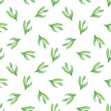 Seamless pattern with green  leaf. Vector illustration. Watercolor painted background Royalty Free Stock Photos