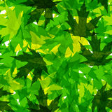 Seamless pattern with green leaves. Stock Image