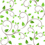 Seamless pattern with green leaves. Royalty Free Stock Image