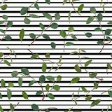 Seamless pattern of green leaves and branches of flowers tradiskantsaniya on a striped background. Vector stock illustration