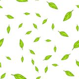 Seamless pattern of green leaves doodle vector illustration