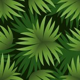 Seamless Pattern, Green Leaves Royalty Free Stock Photo