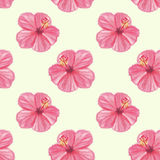 Seamless pattern with green leaves and flowers Royalty Free Stock Image