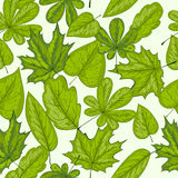 Seamless pattern with green leaves Royalty Free Stock Images