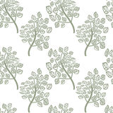 Seamless pattern of green leaves Stock Image