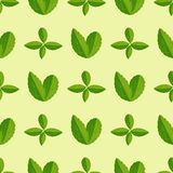 Seamless pattern with green leaves vector illustration nature leaf design floral summer plant textile fashion background. Seamless pattern with green leaves royalty free illustration