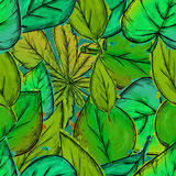 Seamless Pattern of Green Leaves Watercolor Overlap. Art Stock Photography