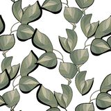 Seamless pattern of green leaves. On white background Royalty Free Stock Photos