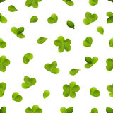 Seamless pattern of green petals of clover. Seamless pattern of green spring petals of clover Stock Photography