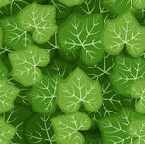 Seamless pattern with green pumpkin leaves. Vector Stock Photos