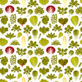 Seamless pattern with green salad plants. Food background Stock Images
