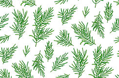 Seamless pattern of green spruce branches on a white background. Seamless pattern of green spruce branches on a white background Stock Photography