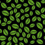 Seamless pattern with green strawberry leaves. Seamless vector pattern with green strawberry leaves on black background Royalty Free Stock Photos