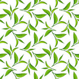 Seamless pattern of green tea leaves Royalty Free Stock Photo
