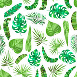 Seamless pattern with green tropical leaves royalty free stock image