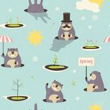 Seamless pattern for Grounghog Day Royalty Free Stock Photos