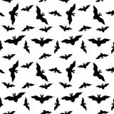 Seamless pattern with halloween bats on white backround Royalty Free Stock Images