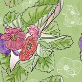 Seamless pattern with Hand drawing begonia flowers Royalty Free Stock Photo