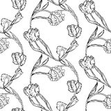 Seamless pattern with hand drawing black and white tulips flowers Stock Images