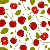 Seamless pattern of hand-drawing various juicy fruit cherry vector Royalty Free Stock Image